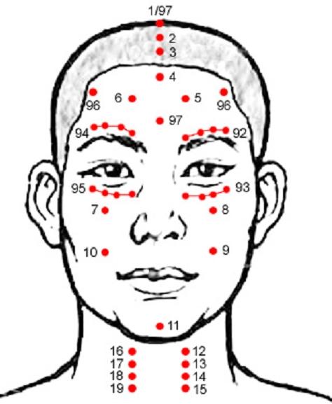 Raspored vrućih tačaka na glavi