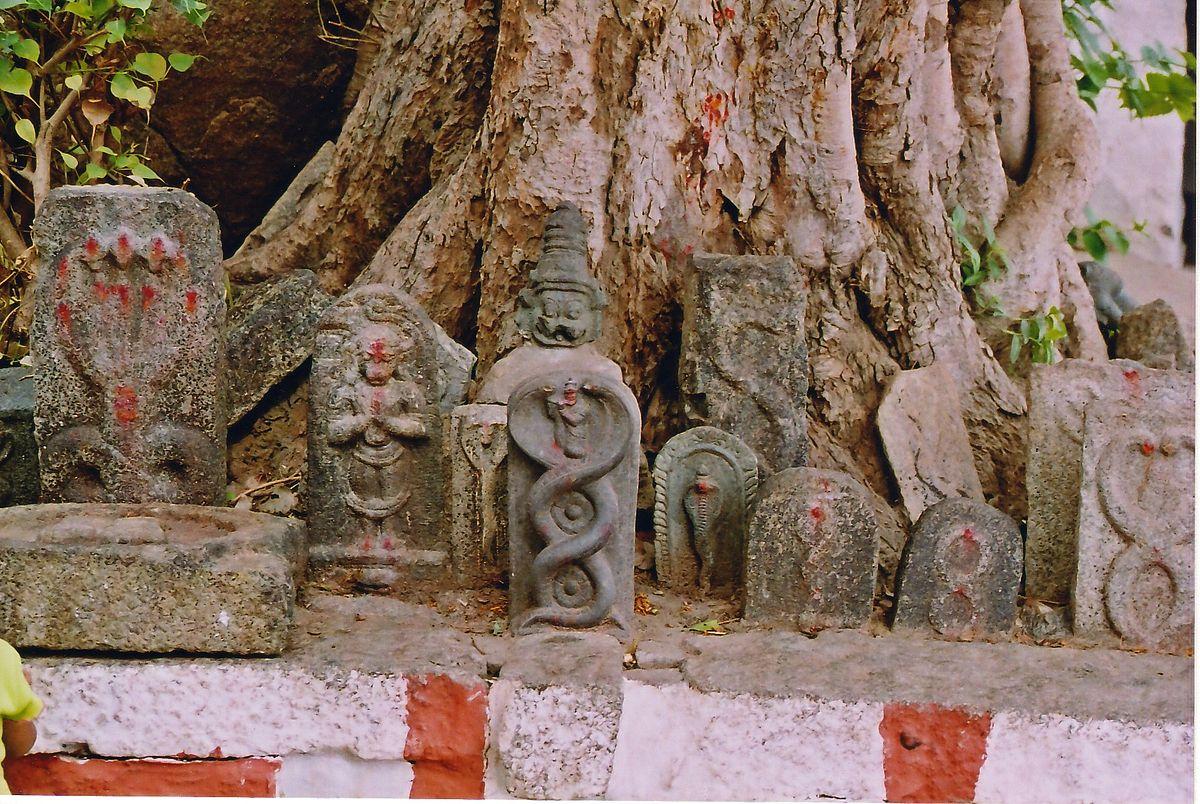 1200px-Vijayanagar_snakestone